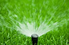 GROW LIKE A PRO – Irrigation Checklist