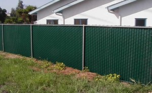 bear fence chain link