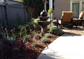 Cantor's Corner: Efficient Landscape Design With Color