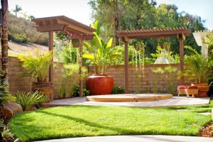 Cantor's Corner: Keys to Great Landscape Design & Installation
