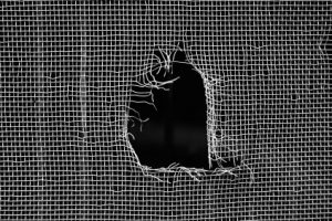 Repairing a Torn Window Screen – Easy Home Repairs