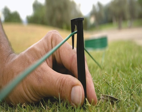 Close up of a hand putting a stick in grass